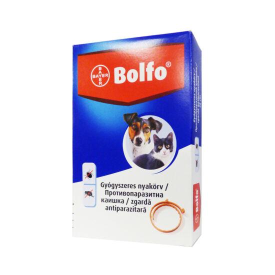 Bolfo nyakörv kistestű kutya, macska 38cm