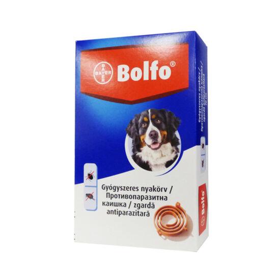 Bolfo nyakörv nagytestű kutya 70cm